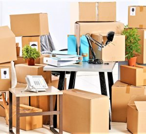 Packers and Movers in Udaipur – List of All Udaipur Packers & Movers